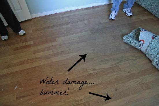 Water Damage Hardwood Floor Helpful Homemade