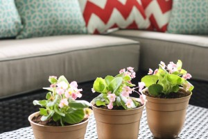Easy DIY Gold Flowerpots
