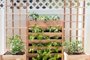 DIY Vertical Pizza Garden
